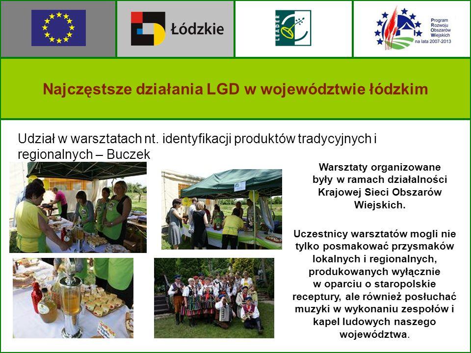 Najczęstsze działania LGD w województwie łódzkim Udział w warsztatach nt. identyfikacji produktów tradycyjnych i regionalnych – Buczek Warsztaty organ