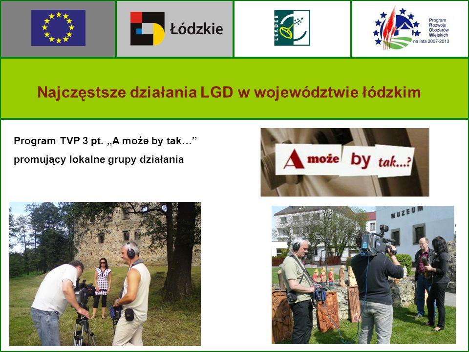 Program TVP 3 pt. A może by tak… promujący lokalne grupy działania Najczęstsze działania LGD w województwie łódzkim