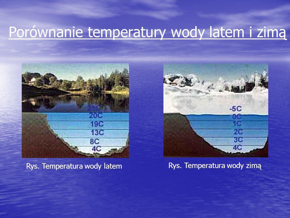 Porównanie temperatury wody latem i zimą Rys. Temperatura wody latem Rys. Temperatura wody zimą