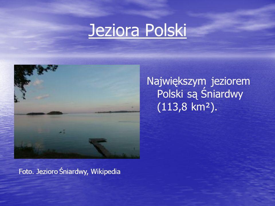 Jeziora Polski Największym jeziorem Polski są Śniardwy (113,8 km²). Foto. Jezioro Śniardwy, Wikipedia