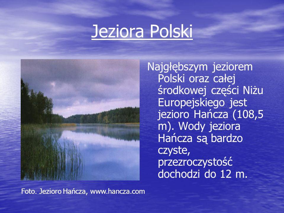 Jeziora Polski Najgłębszym jeziorem Polski oraz całej środkowej części Niżu Europejskiego jest jezioro Hańcza (108,5 m). Wody jeziora Hańcza są bardzo