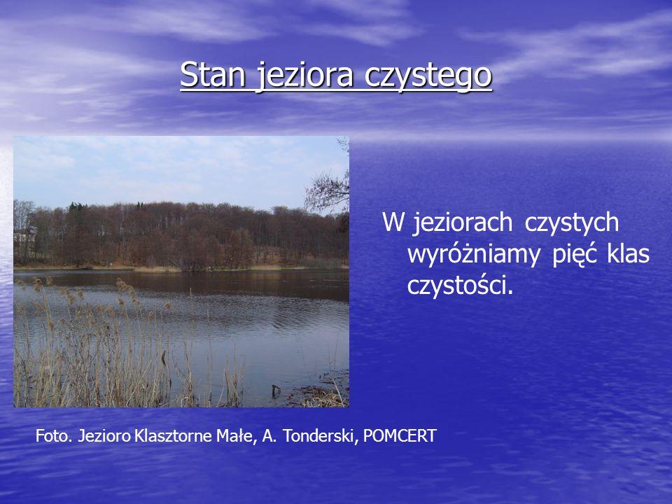 Stan jeziora czystego W jeziorach czystych wyróżniamy pięć klas czystości. Foto. Jezioro Klasztorne Małe, A. Tonderski, POMCERT