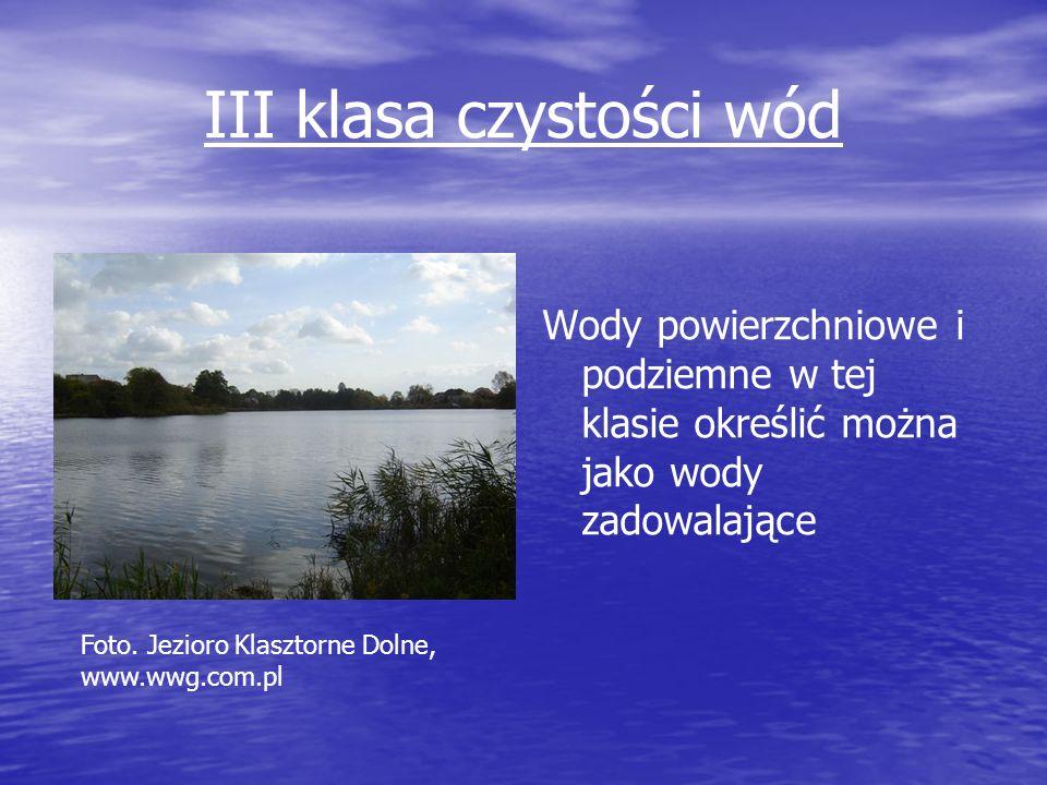 III klasa czystości wód Wody powierzchniowe i podziemne w tej klasie określić można jako wody zadowalające Foto. Jezioro Klasztorne Dolne, www.wwg.com