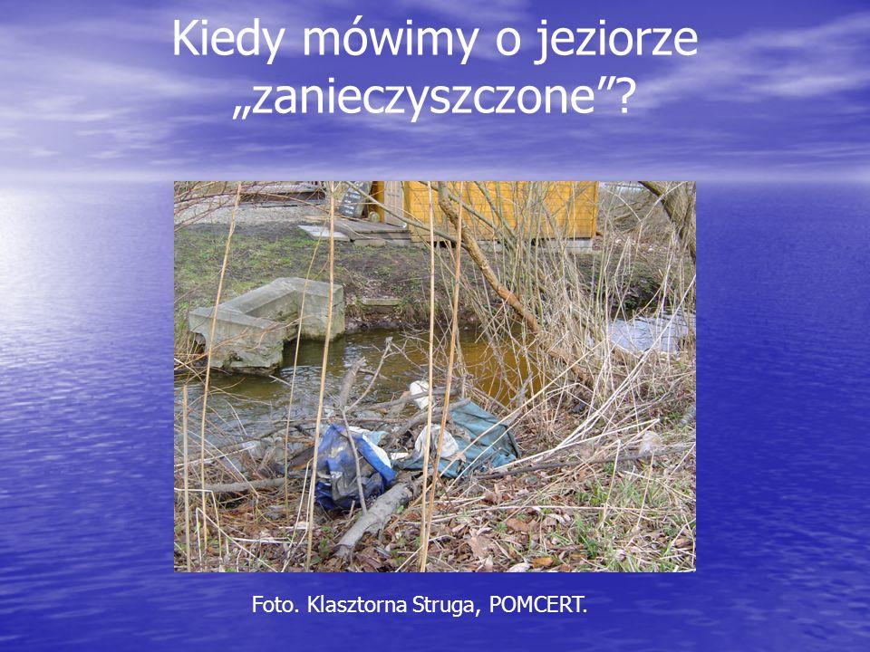 Kiedy mówimy o jeziorze zanieczyszczone? Foto. Klasztorna Struga, POMCERT.