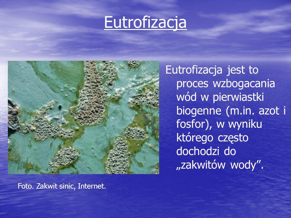 Eutrofizacja Eutrofizacja jest to proces wzbogacania wód w pierwiastki biogenne (m.in. azot i fosfor), w wyniku którego często dochodzi do zakwitów wo