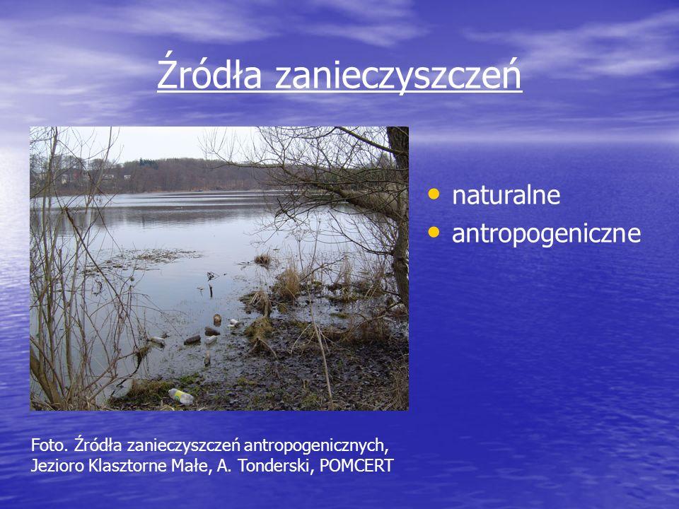 Źródła zanieczyszczeń naturalne antropogeniczne Foto. Źródła zanieczyszczeń antropogenicznych, Jezioro Klasztorne Małe, A. Tonderski, POMCERT