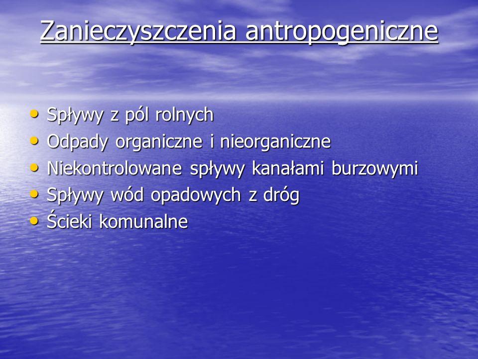 Zanieczyszczenia antropogeniczne Spływy z pól rolnych Spływy z pól rolnych Odpady organiczne i nieorganiczne Odpady organiczne i nieorganiczne Niekont