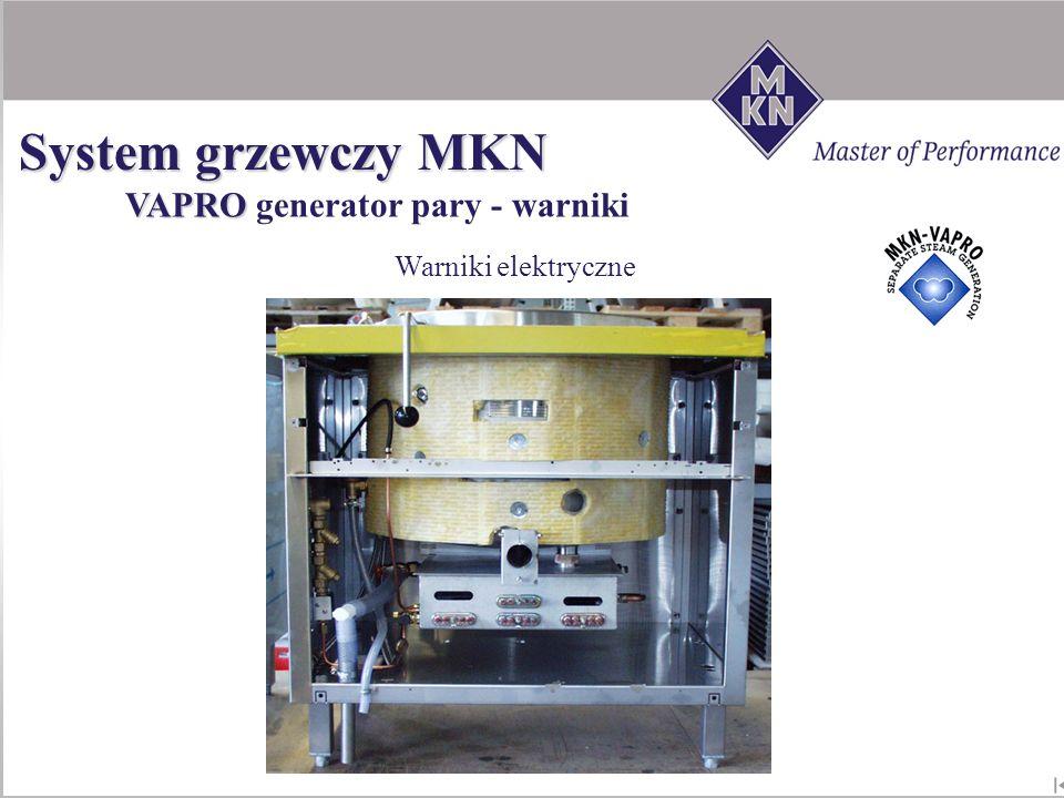 Warniki elektryczne VAPRO VAPRO generator pary - warniki System grzewczy MKN