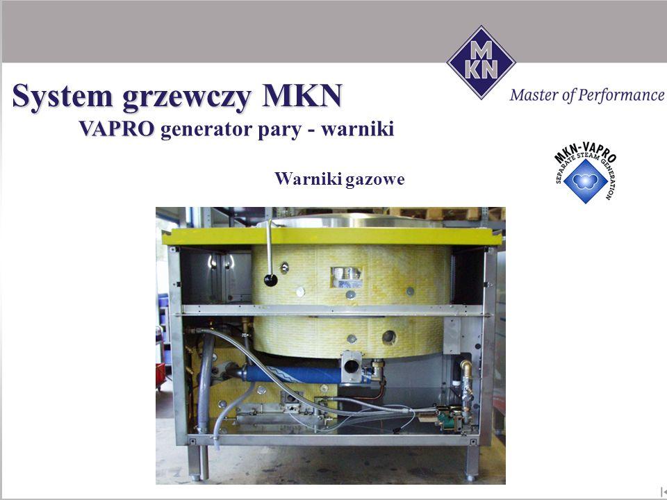 Warniki gazowe VAPRO VAPRO generator pary - warniki System grzewczy MKN