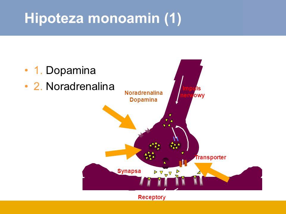 Hipoteza monoamin (1) 1. Dopamina 2. Noradrenalina Receptory Synapsa Impuls nerwowy Transporter Noradrenalina Dopamina