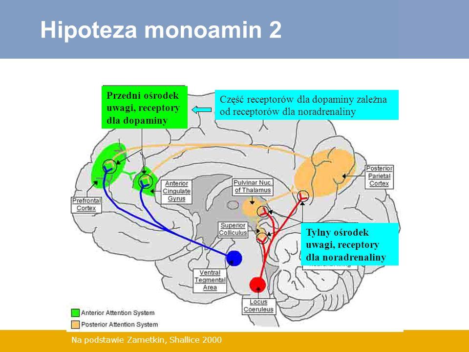 Na podstawie Zametkin, Shallice 2000 Hipoteza monoamin 2 Przedni ośrodek uwagi, receptory dla dopaminy Tylny ośrodek uwagi, receptory dla noradrenalin