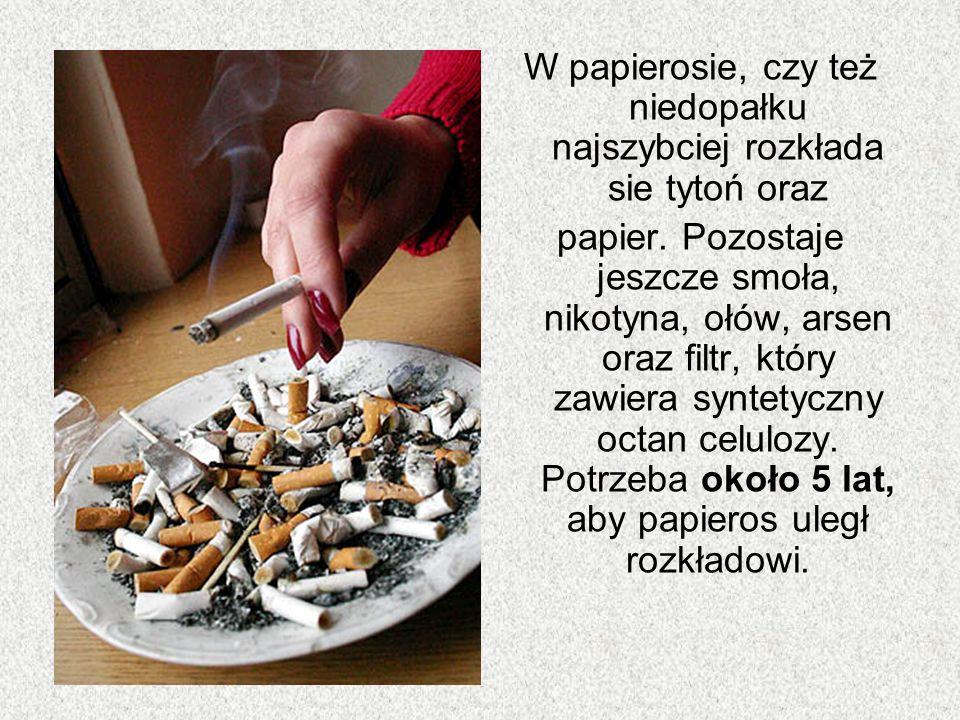 W papierosie, czy też niedopałku najszybciej rozkłada sie tytoń oraz papier. Pozostaje jeszcze smoła, nikotyna, ołów, arsen oraz filtr, który zawiera