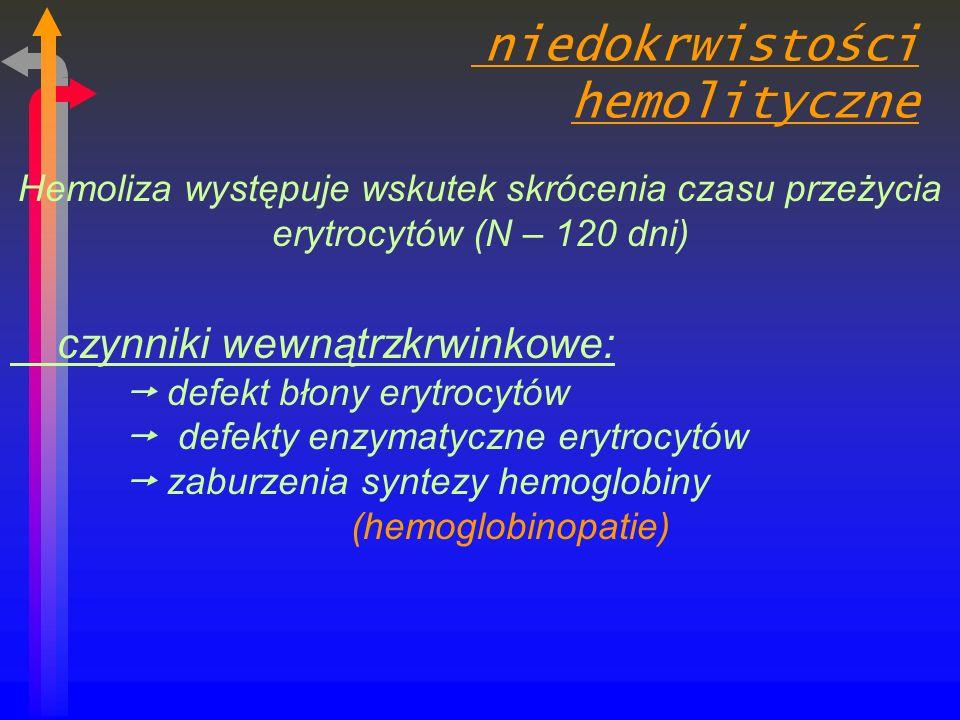 niedokrwistości hemolityczne Hemoliza występuje wskutek skrócenia czasu przeżycia erytrocytów (N – 120 dni) czynniki wewnątrzkrwinkowe: defekt błony erytrocytów defekty enzymatyczne erytrocytów zaburzenia syntezy hemoglobiny (hemoglobinopatie)