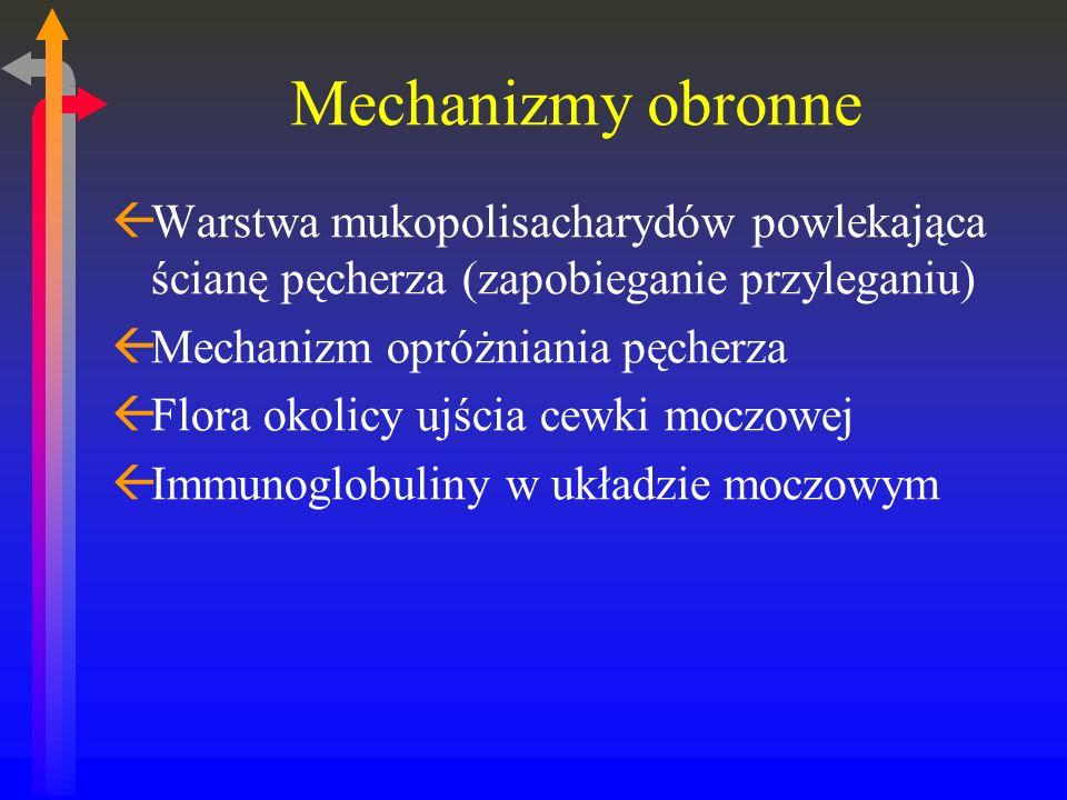 Mechanizmy obronne ßWarstwa mukopolisacharydów powlekająca ścianę pęcherza (zapobieganie przyleganiu) ßMechanizm opróżniania pęcherza ßFlora okolicy ujścia cewki moczowej ßImmunoglobuliny w układzie moczowym