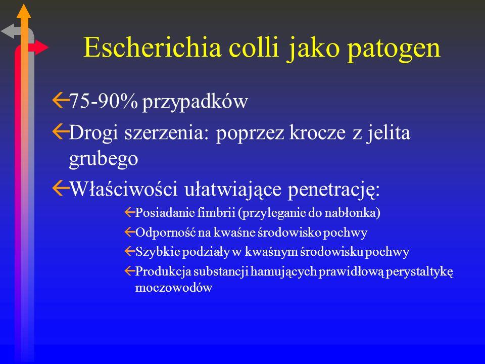 Leczenie ßLeczenie celowane ßPenicylina i półsyntetyczne pochodne ßCefalosporyny ßNitrofurantoina (III trymestr- nie) ßCzas terapii: ßCykle dwutygodniowe ßPosiew kontrolny po tygodniu od zakończenia leczenia ßKontrola co 4 tygodnie