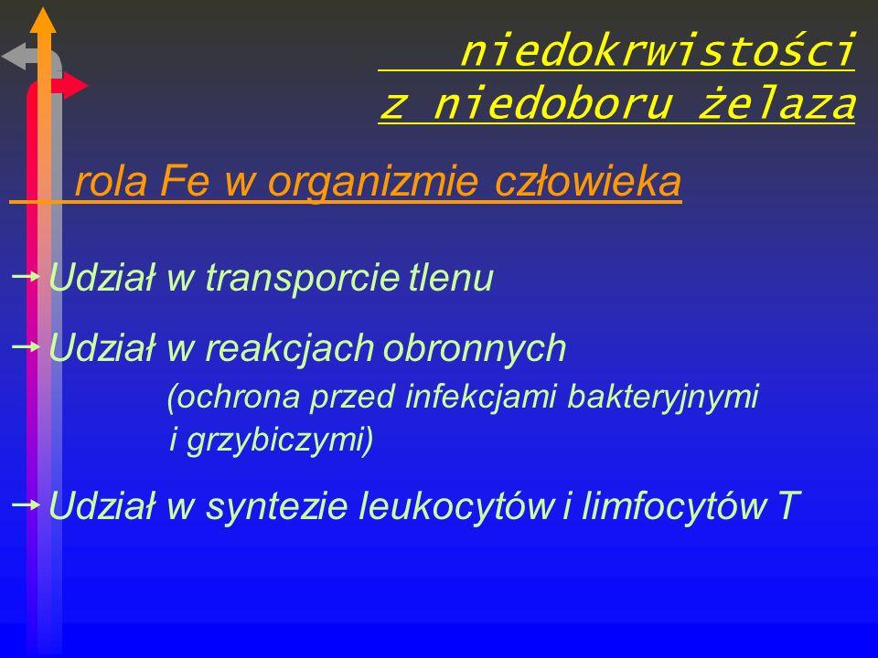 niedokrwistości z niedoboru żelaza rola Fe w organizmie człowieka Udział w transporcie tlenu Udział w reakcjach obronnych (ochrona przed infekcjami bakteryjnymi i grzybiczymi) Udział w syntezie leukocytów i limfocytów T