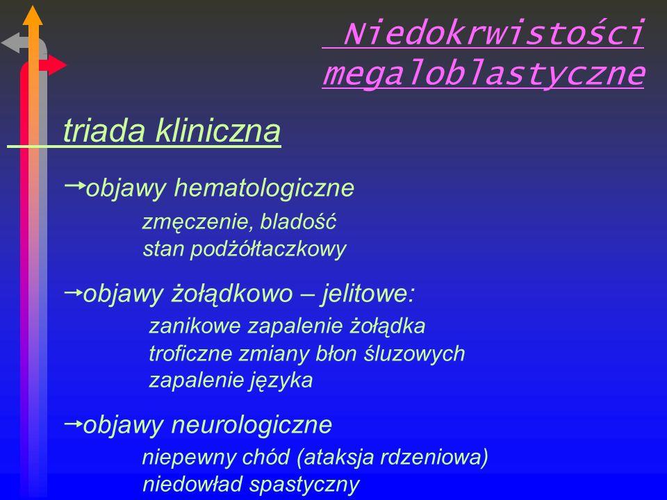 Niedokrwistości megaloblastyczne triada kliniczna objawy hematologiczne zmęczenie, bladość stan podżółtaczkowy objawy żołądkowo – jelitowe: zanikowe zapalenie żołądka troficzne zmiany błon śluzowych zapalenie języka objawy neurologiczne niepewny chód (ataksja rdzeniowa) niedowład spastyczny