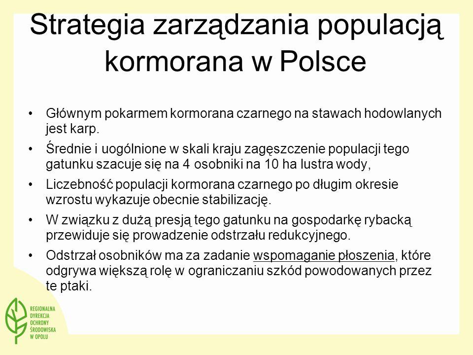 Strategia zarządzania populacją kormorana w Polsce Głównym pokarmem kormorana czarnego na stawach hodowlanych jest karp. Średnie i uogólnione w skali
