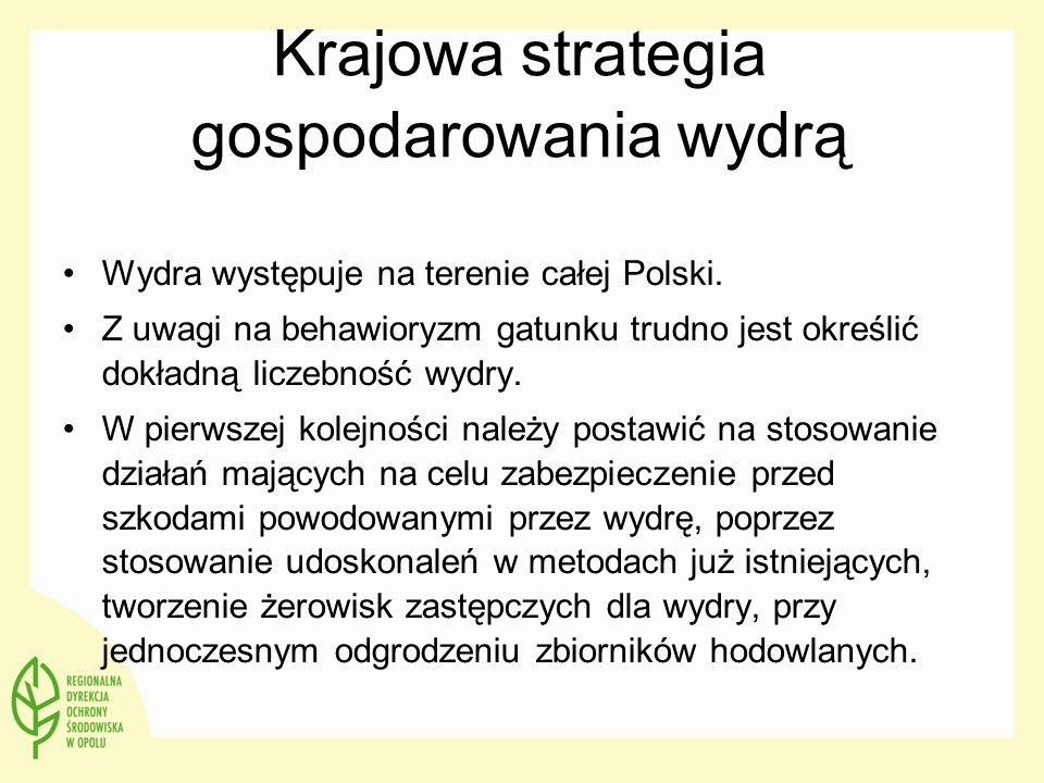 Krajowa strategia gospodarowania wydrą Wydra występuje na terenie całej Polski. Z uwagi na behawioryzm gatunku trudno jest określić dokładną liczebnoś