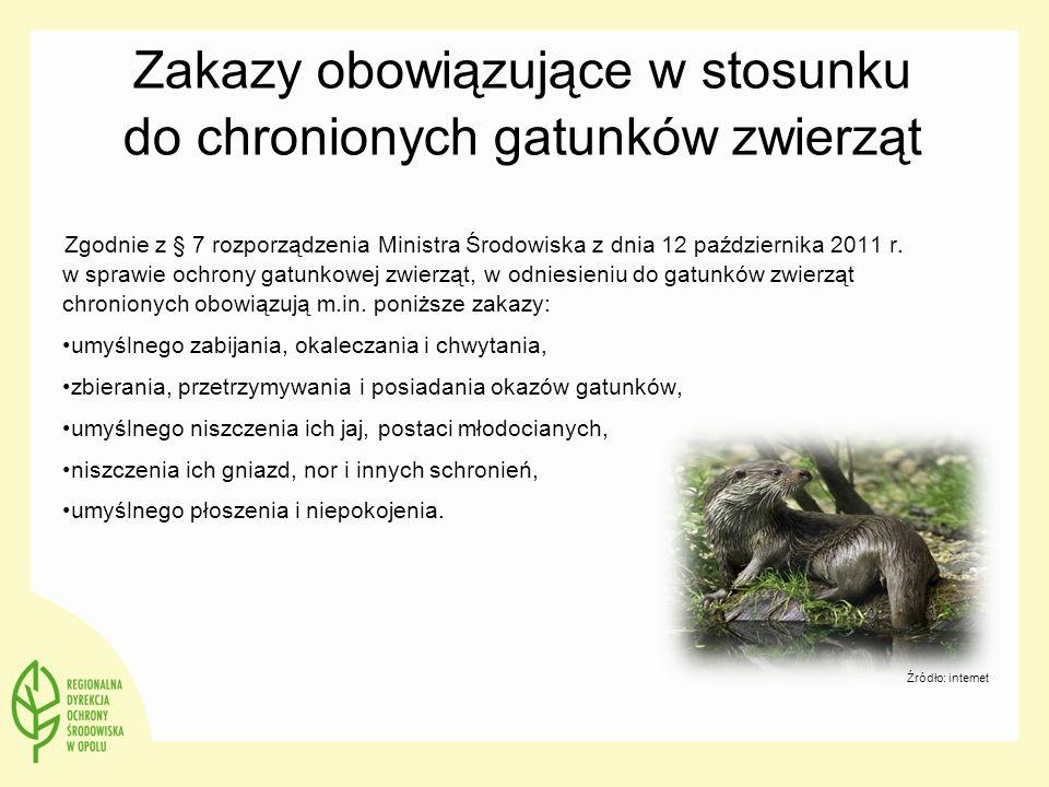 Zakazy obowiązujące w stosunku do chronionych gatunków zwierząt Zgodnie z § 7 rozporządzenia Ministra Środowiska z dnia 12 października 2011 r. w spra