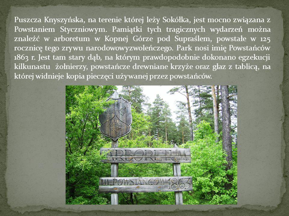 Puszcza Knyszyńska, na terenie której leży Sokółka, jest mocno związana z Powstaniem Styczniowym. Pamiątki tych tragicznych wydarzeń można znaleźć w a