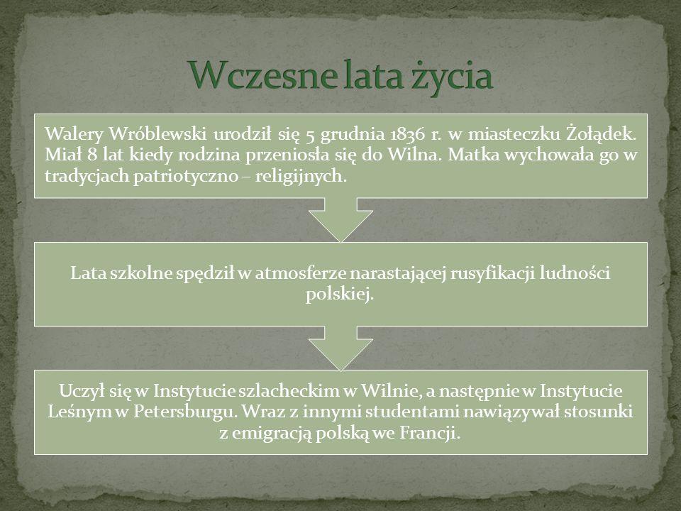 Uczył się w Instytucie szlacheckim w Wilnie, a następnie w Instytucie Leśnym w Petersburgu. Wraz z innymi studentami nawiązywał stosunki z emigracją p