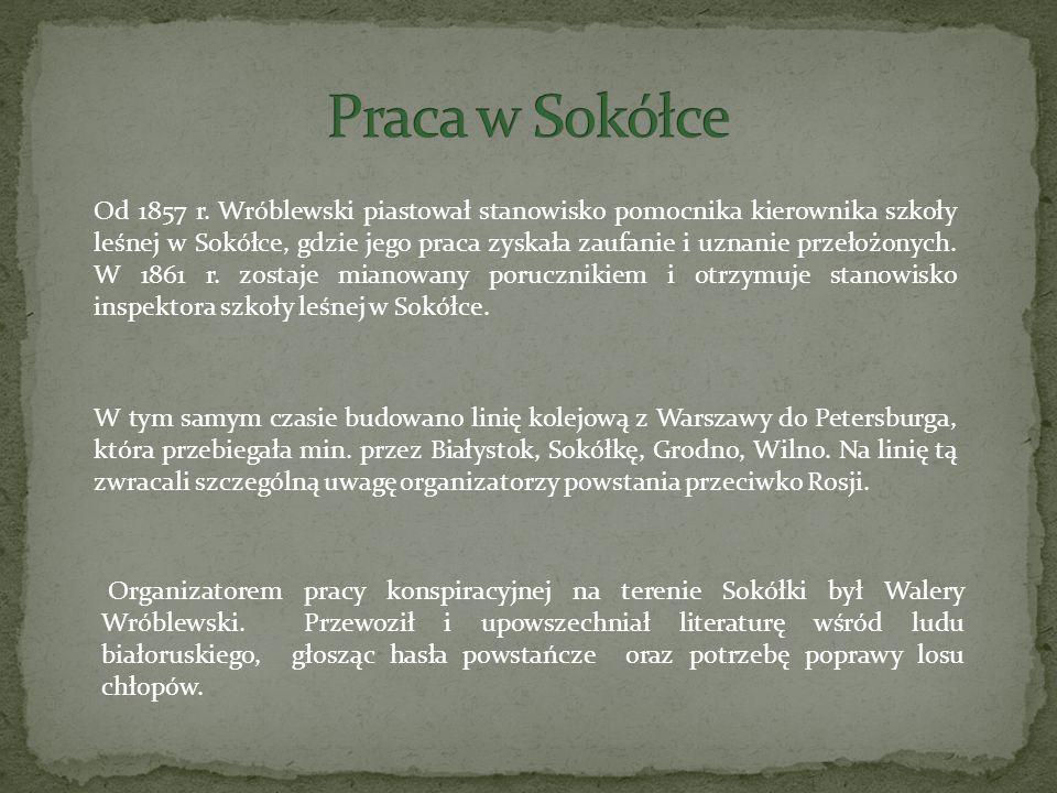 Od 1857 r. Wróblewski piastował stanowisko pomocnika kierownika szkoły leśnej w Sokółce, gdzie jego praca zyskała zaufanie i uznanie przełożonych. W 1