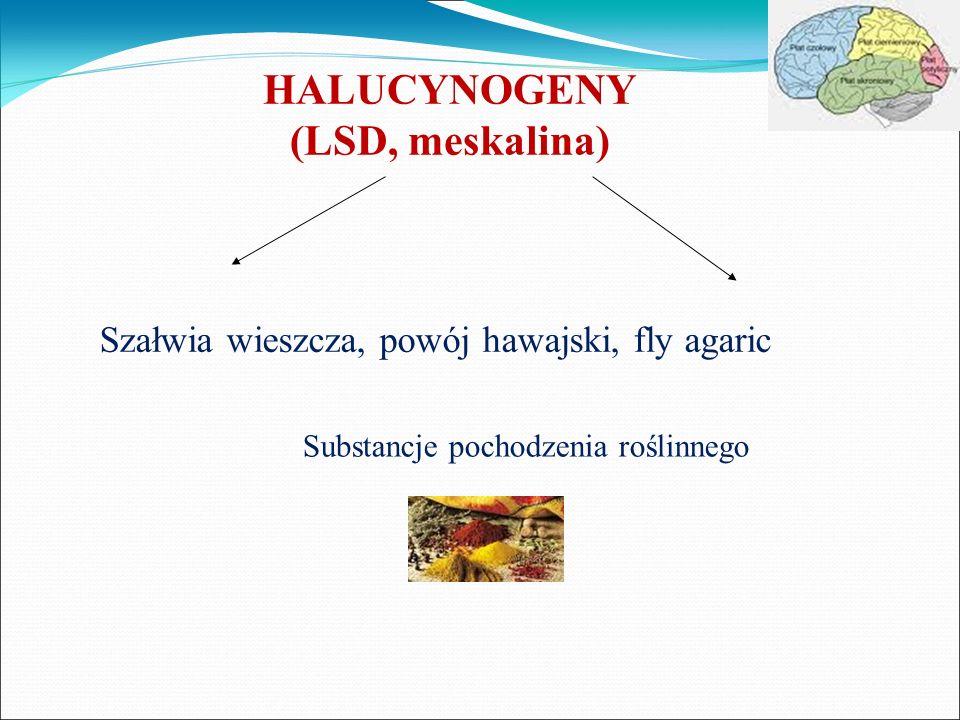 HALUCYNOGENY (LSD, meskalina) Szałwia wieszcza, powój hawajski, fly agaric Substancje pochodzenia roślinnego
