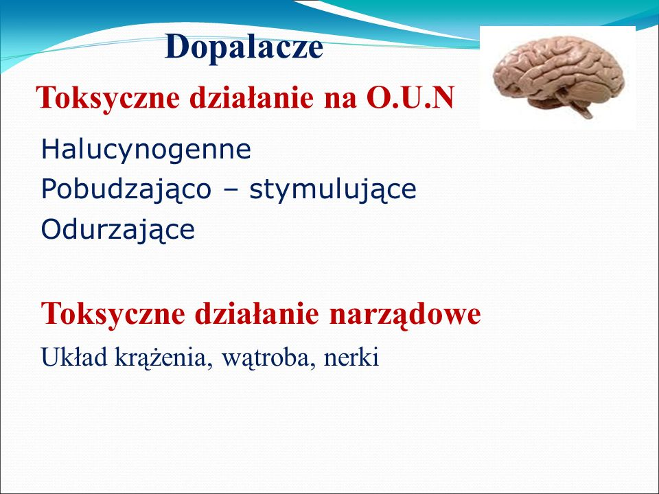 Dopalacze Toksyczne działanie na O.U.N Halucynogenne Pobudzająco – stymulujące Odurzające Toksyczne działanie narządowe Układ krążenia, wątroba, nerki