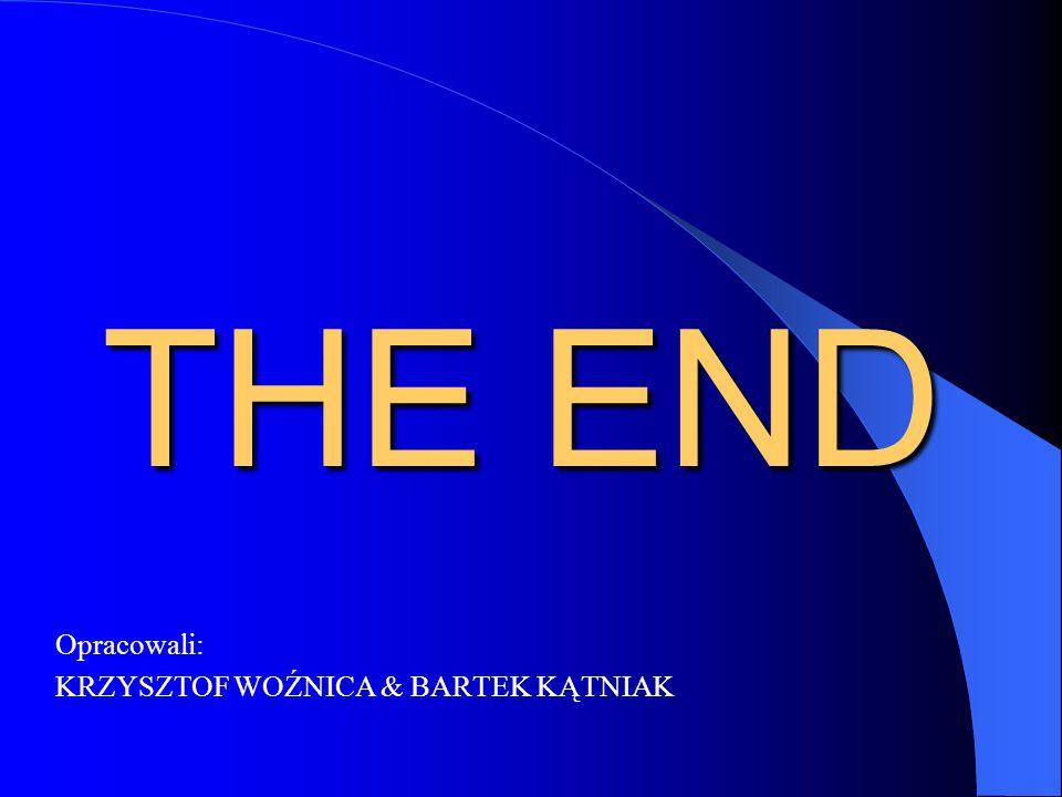 THE END Opracowali: KRZYSZTOF WOŹNICA & BARTEK KĄTNIAK