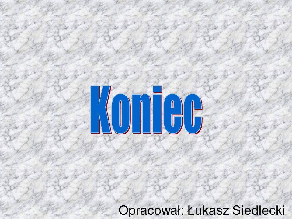 Opracował: Łukasz Siedlecki