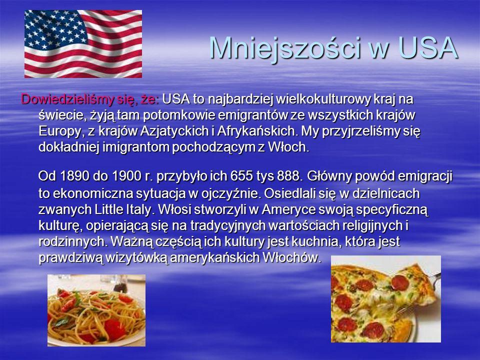 Mniejszości w USA Dowiedzieliśmy się, że: USA to najbardziej wielkokulturowy kraj na świecie, żyją tam potomkowie emigrantów ze wszystkich krajów Euro