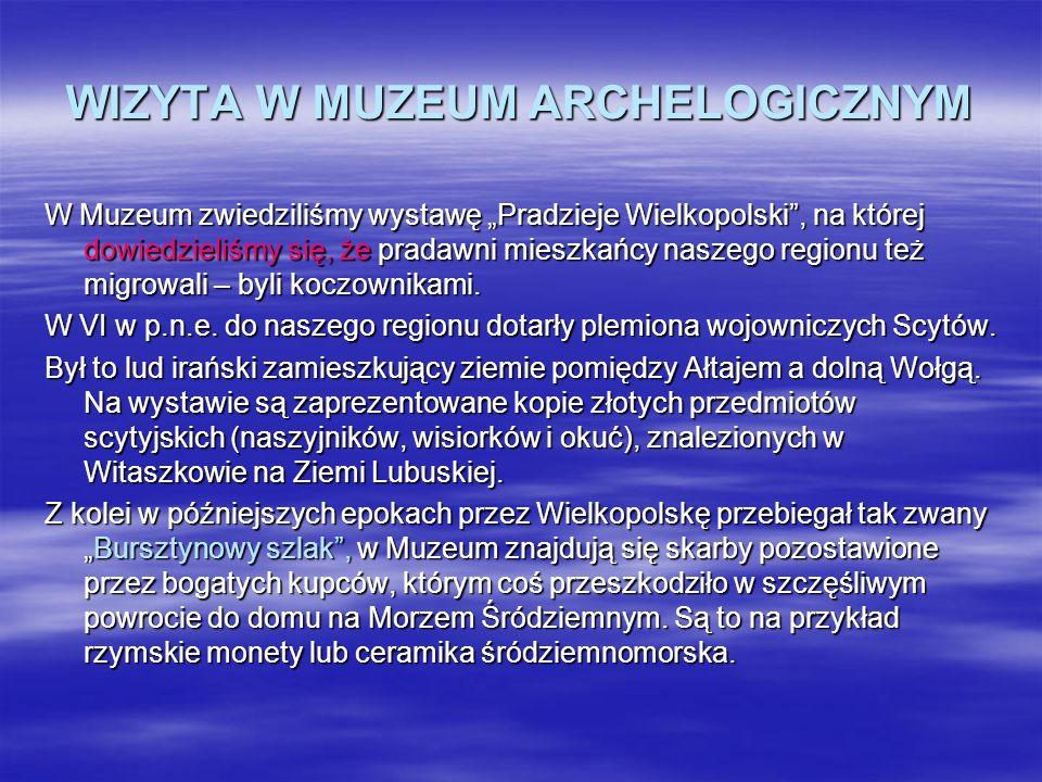 WIZYTA W MUZEUM ARCHELOGICZNYM W Muzeum zwiedziliśmy wystawę Pradzieje Wielkopolski, na której dowiedzieliśmy się, że pradawni mieszkańcy naszego regi