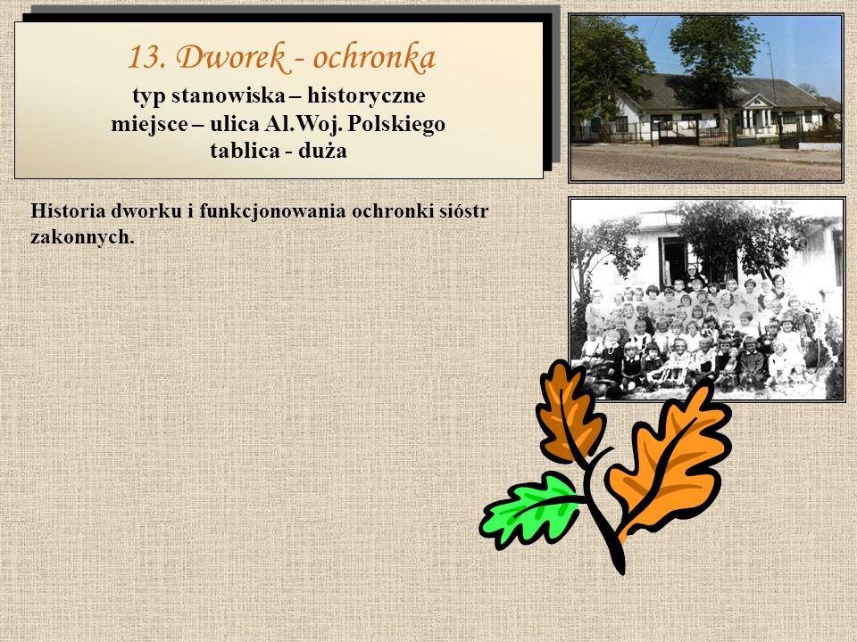 Krótki opis parku oraz historia synagogi istniejącej do czasów II wojny światowej. 12. Nowy Park - Synagoga typ stanowiska – rekreacyjno-historyczne m