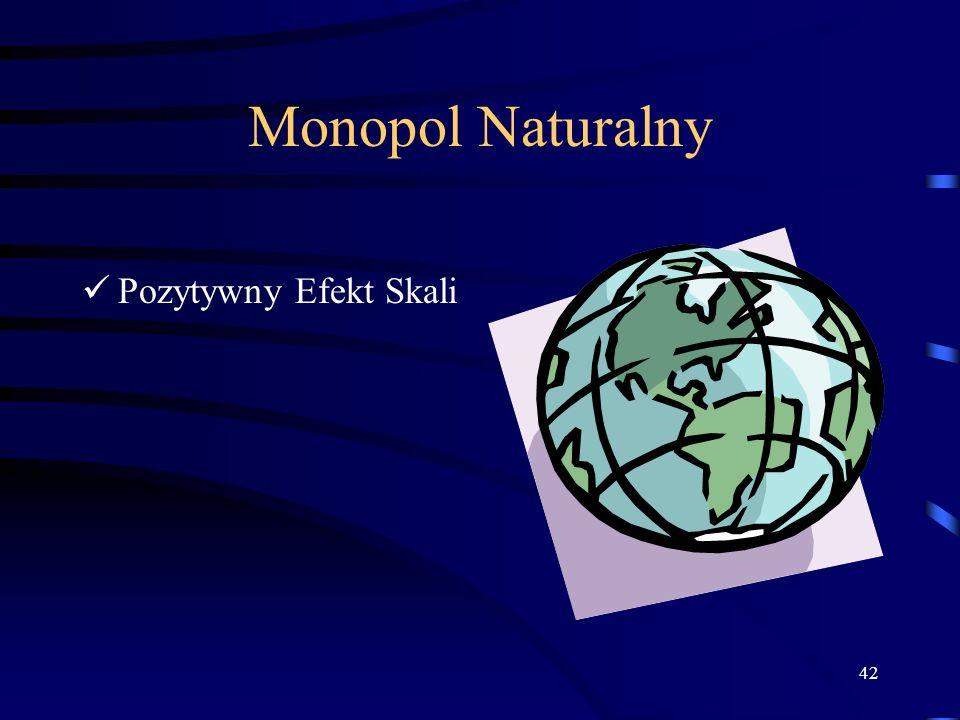 42 Monopol Naturalny Pozytywny Efekt Skali