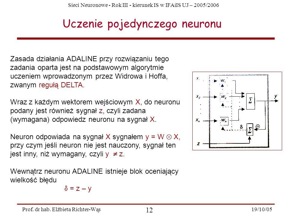 Sieci Neuronowe - Rok III - kierunek IS w IFAiIS UJ – 2005/2006 19/10/05 12 Prof. dr hab. Elżbieta Richter-Wąs Uczenie pojedynczego neuronu Zasada dzi