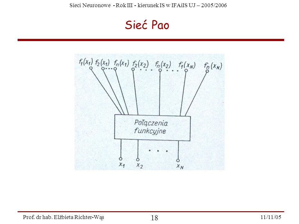 Sieci Neuronowe - Rok III - kierunek IS w IFAiIS UJ – 2005/2006 11/11/05 18 Prof. dr hab. Elżbieta Richter-Wąs Sieć Pao