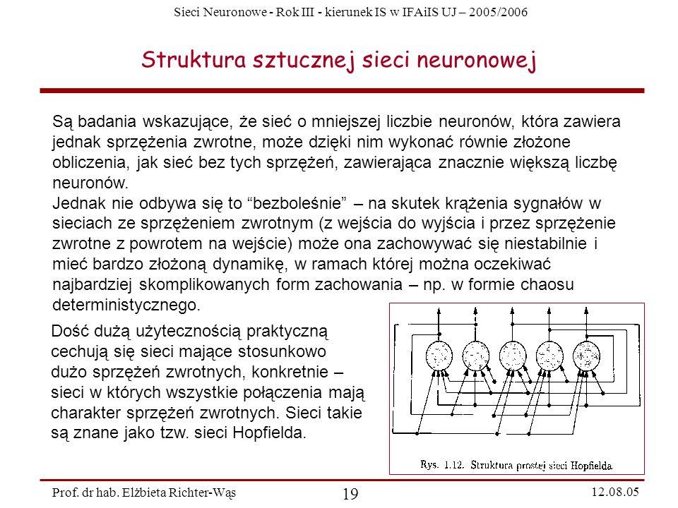Sieci Neuronowe - Rok III - kierunek IS w IFAiIS UJ – 2005/2006 Prof. dr hab. Elżbieta Richter-Wąs 19 12.08.05 Struktura sztucznej sieci neuronowej Są