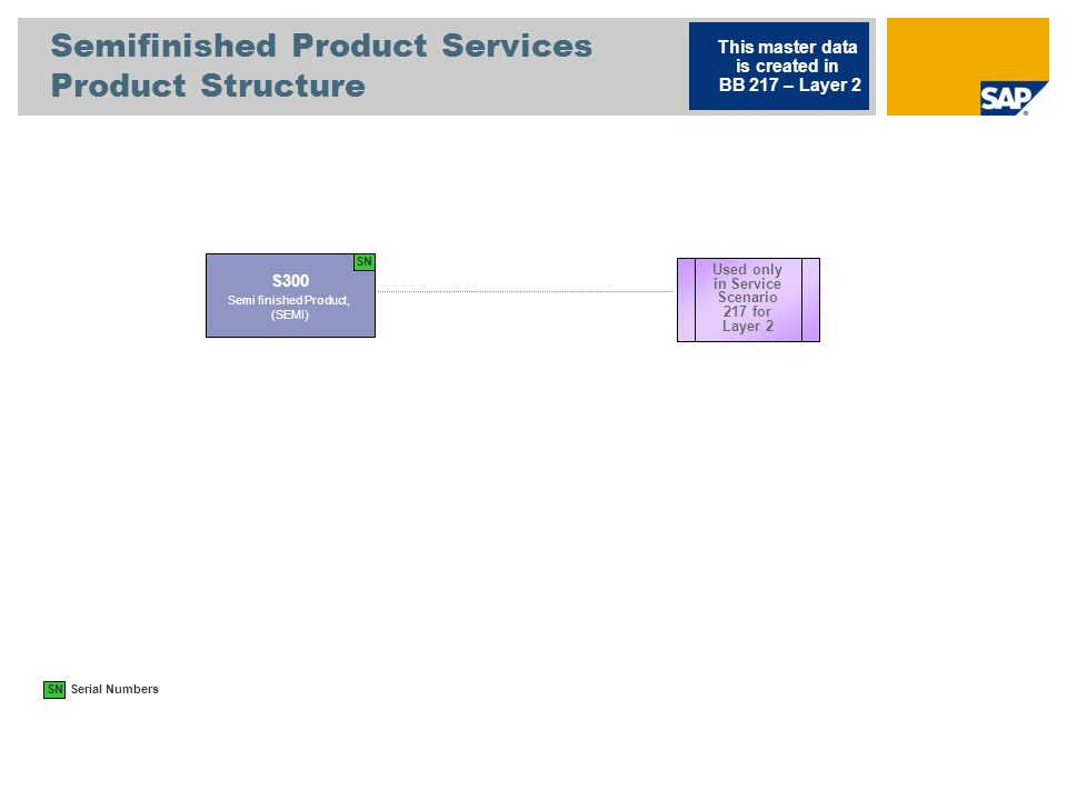 Semifinished Product Services Product Structure S300 Semi finished Product, (SEMI) This master data is created in BB 217 – Layer 2 Used only in Servic