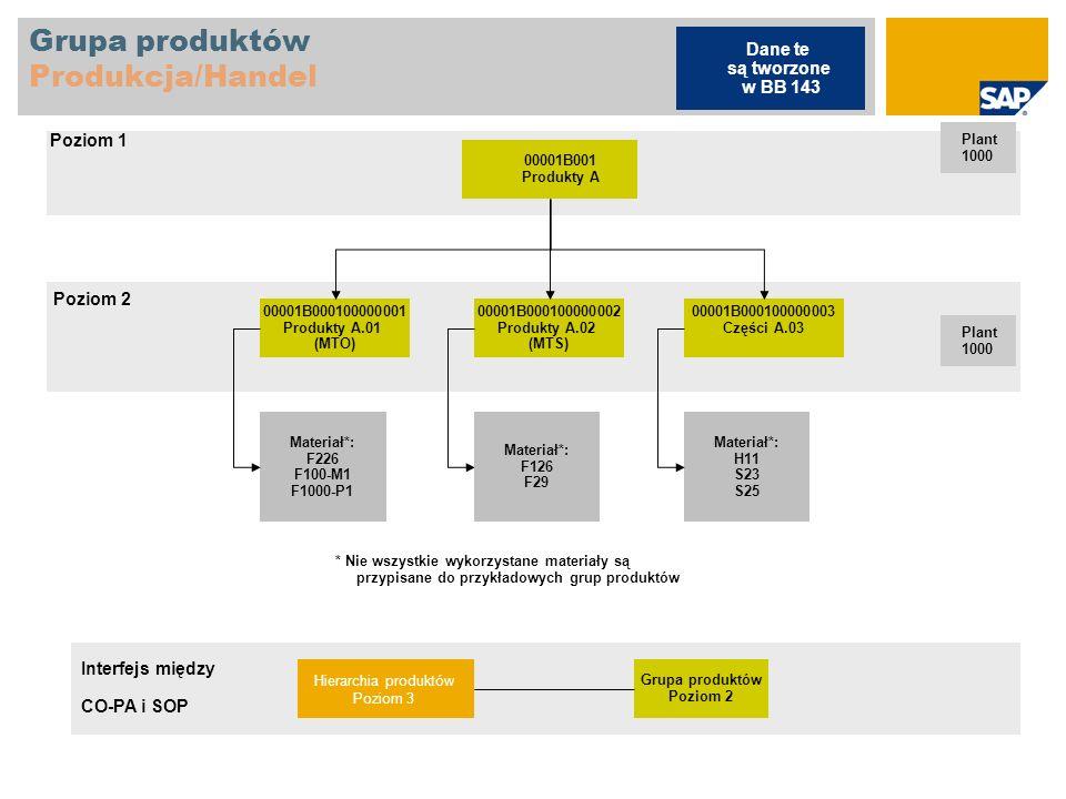 Grupa produktów Produkcja/Handel 00001B001 Produkty A Plant 1000 00001B000100000001 Produkty A.01 (MTO) 00001B000100000002 Produkty A.02 (MTS) 00001B0