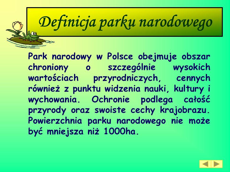 Rezerwaty przyrody Rezerwaty przyrody obejmują niewielkie obszary, zwykle do 500 hektarów, o dużej wartości przyrodniczej. Tworzone są nie tylko dla o