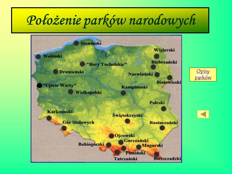 Parki narodowe Zadaniem Parków Narodowych jest ochrona gatunków i ich siedlisk. Park narodowy jest chronionym obszarem o powierzchni ponad 500 hektaró