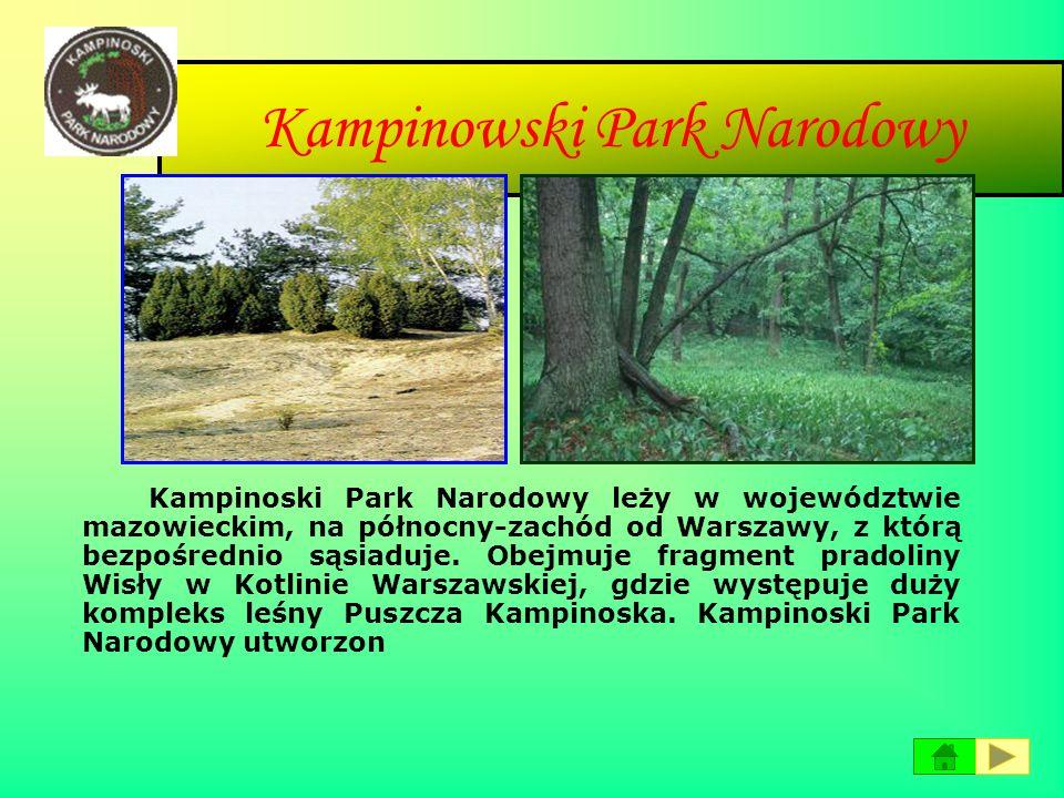 Park Narodowy Gór Stołowych Park Narodowy Gór Stołowych obejmuje polską część Gór Stołowych, które są częścią Sudetów Środkowych. Park leży w Polsce p