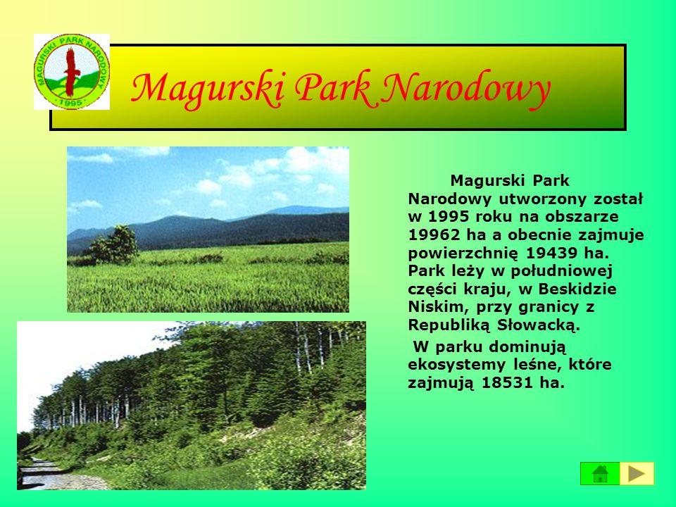 Karkonoski Park Narodowy Karkonoski Park Narodowy znajduje się na terenie województwa dolnośląskiego w południowo-zachodniej części kraju przy granicy