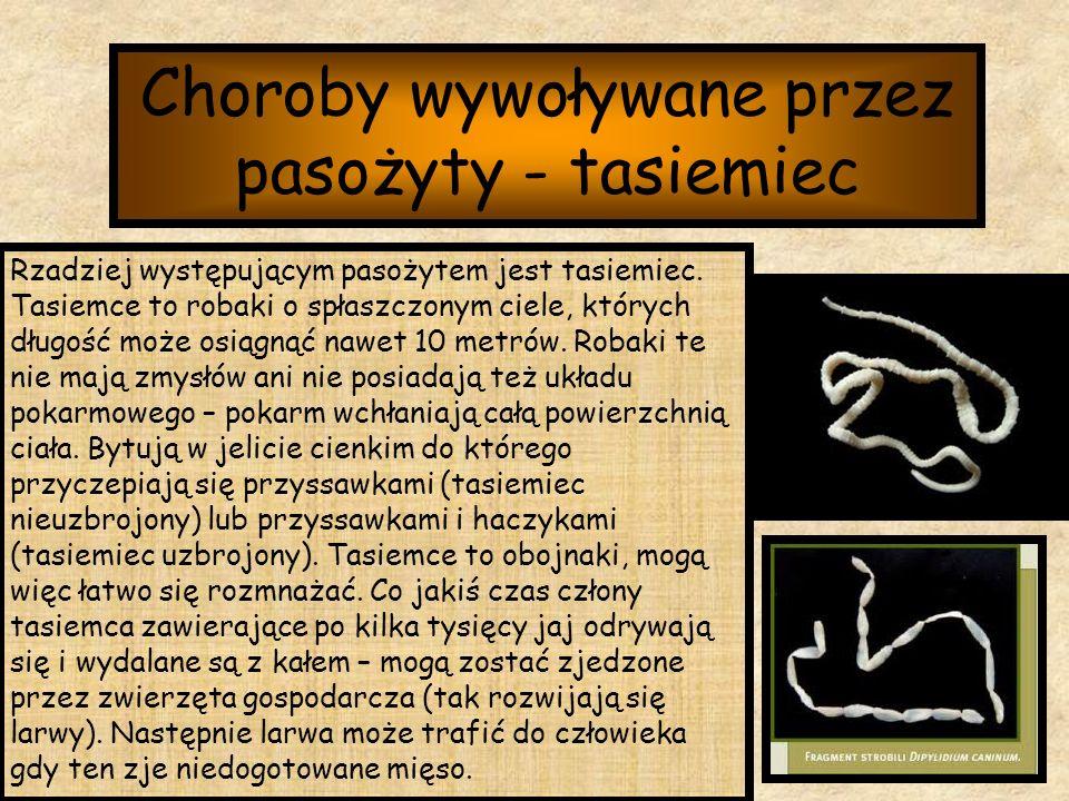 Choroby wywoływane przez pasożyty - tasiemiec Rzadziej występującym pasożytem jest tasiemiec. Tasiemce to robaki o spłaszczonym ciele, których długość