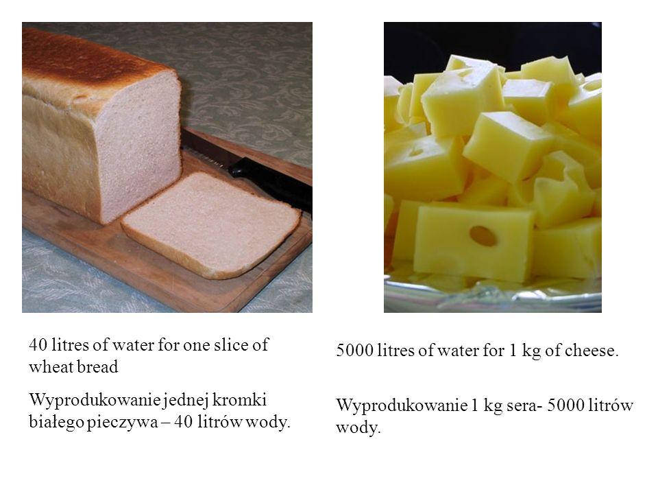 40 litres of water for one slice of wheat bread Wyprodukowanie jednej kromki białego pieczywa – 40 litrów wody.