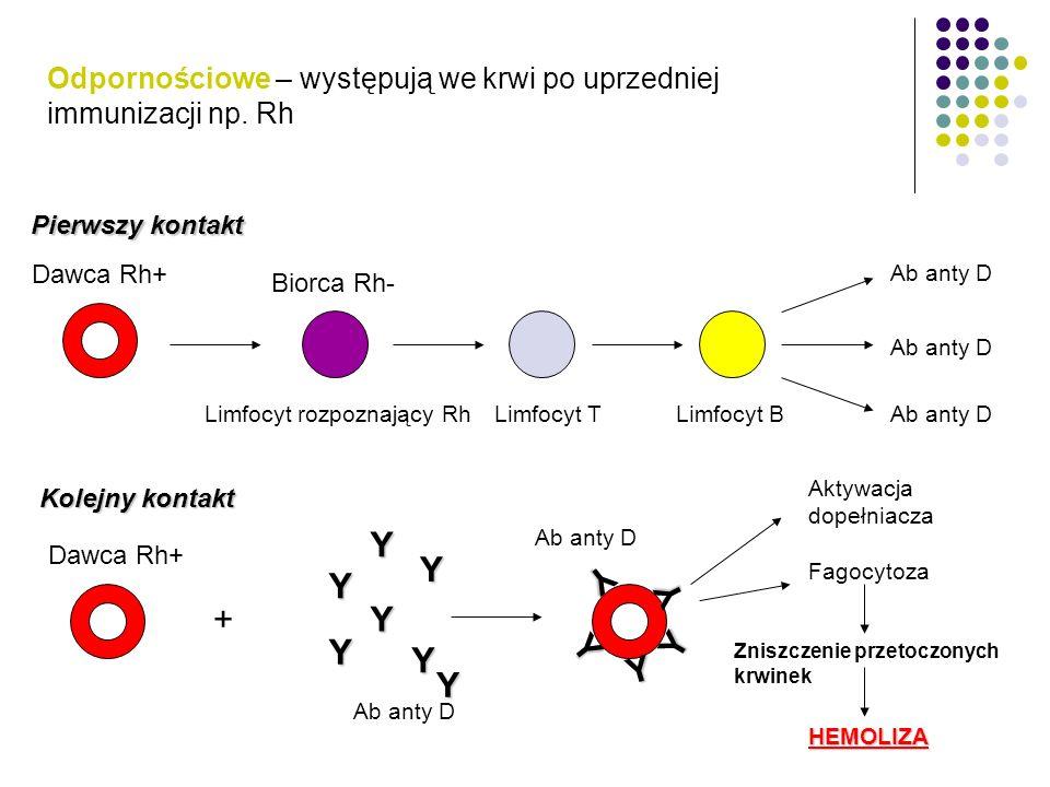 Odpornościowe – występują we krwi po uprzedniej immunizacji np. Rh Pierwszy kontakt Dawca Rh+ Biorca Rh- Limfocyt rozpoznający RhLimfocyt TLimfocyt B