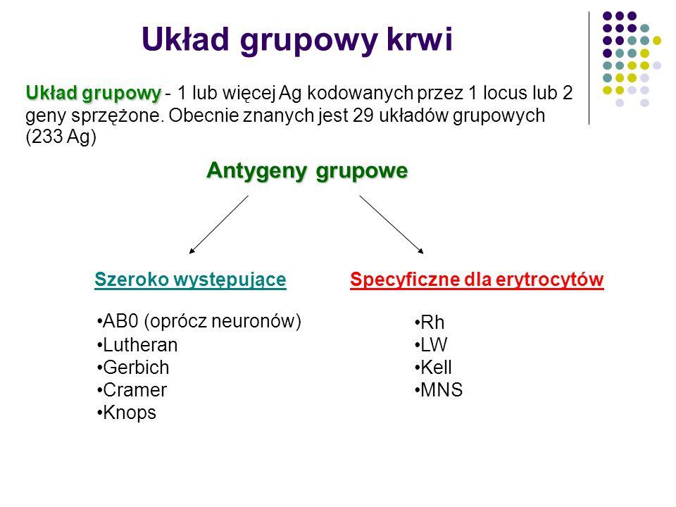 UKŁAD Duffy Na krwinkach płodowych w 6 - 7 tygodniu ciąży Antygen Fy(a - b - ) występuje częściej w rasie czarnej - ochrona przed malarią (Plasmodium knowlensi, Plasmodium vivax), antygen Fy(a + b + ) pełni bowiem rolę receptora dla zarodźców malarii receptor dla chemokin (DARC) - rola w buforowaniu chemokin w krążeniu Przeciwciała odpornościowe anty-Duffy są przyczyną odczynów poprzetoczeniowych, rzadko wywołują chorobę hemolityczną noworodków