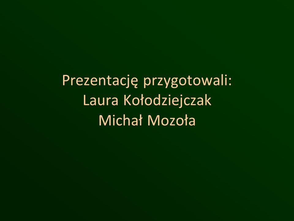 Prezentację przygotowali: Laura Kołodziejczak Michał Mozoła