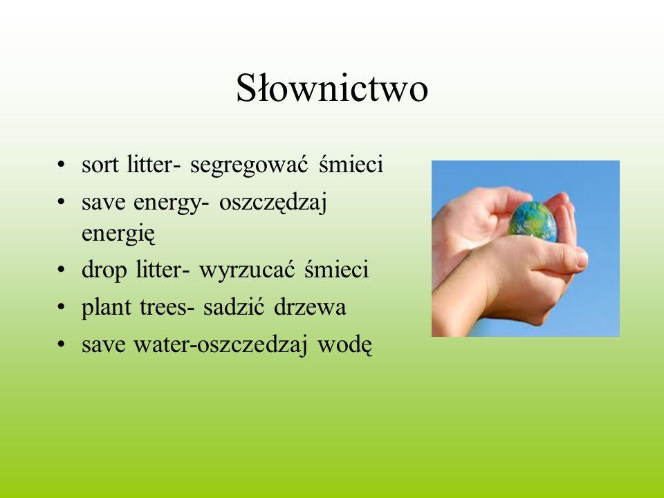Słownictwo sort litter- segregować śmieci save energy- oszczędzaj energię drop litter- wyrzucać śmieci plant trees- sadzić drzewa save water-oszczedza
